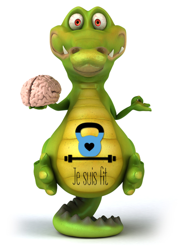 Beat your crocodile brain om resultaat te behalen! - Je suis fit
